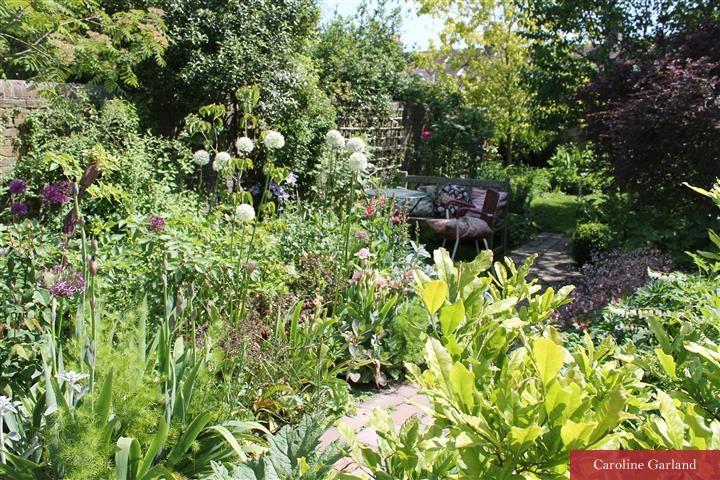 Creating a vista in a town garden