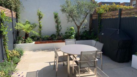 The garden after design