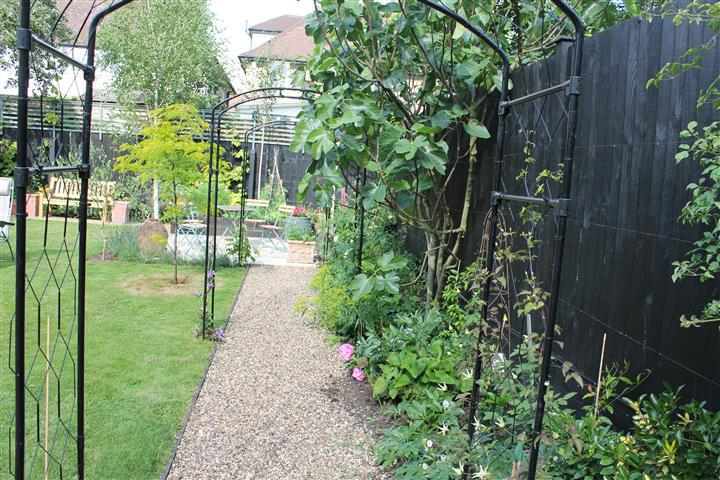 Path leading to veg patch